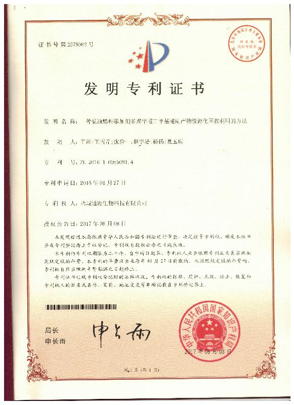 Invention Patent I